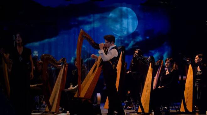 celtic harp3