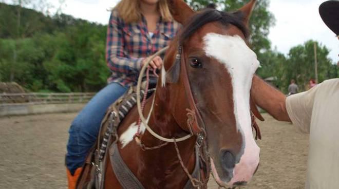 donna e cavallo