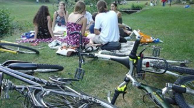 bentornata estate-picnic