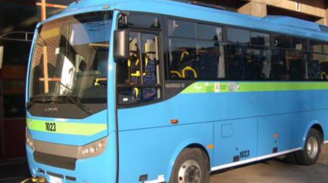 nuovo bus asf