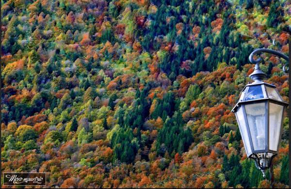 autunno cover - maurizio moro