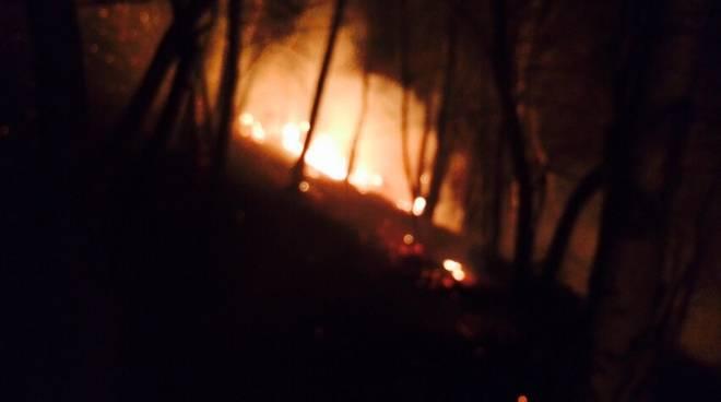 incendio bosco san siro