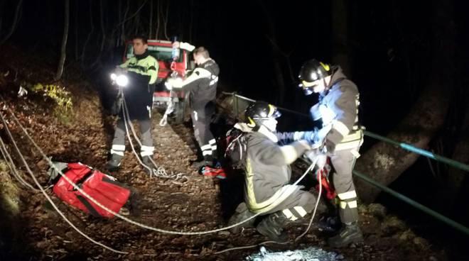 cane da salvare pompieri imbragatura