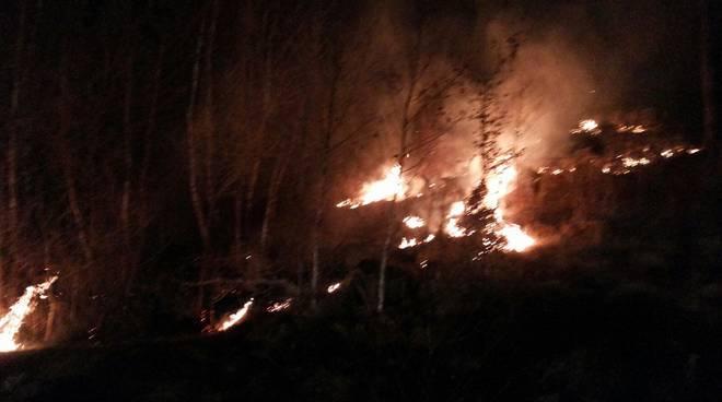 incendio bosco di pigra notte