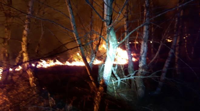 incendio bosco montemezzo