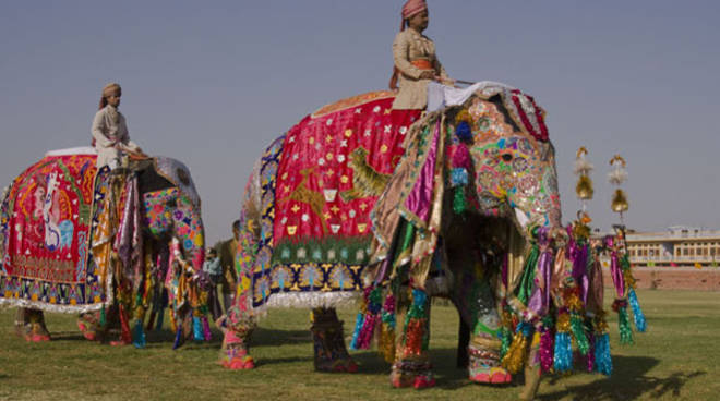 india elephants parade