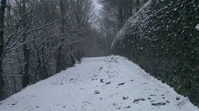 sentiero cao brunate innevato