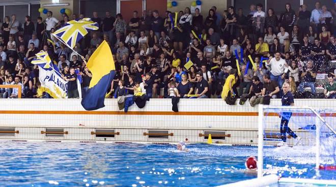 TIFOsi pallanuoto como a muggiò bandiere