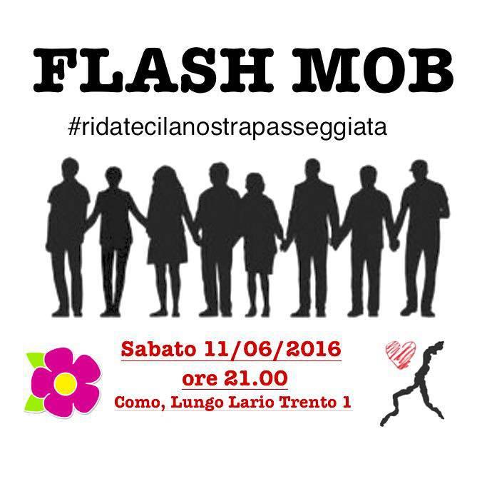 logo flash mob como paratie