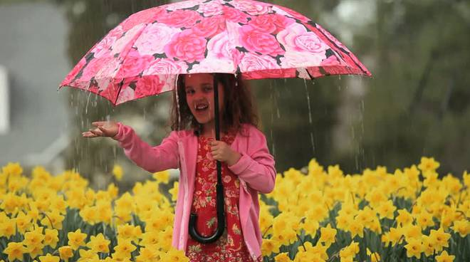 meteo ombrello