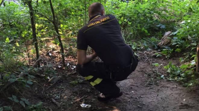 Giallo a due passi dal confine: donna trovata morta nei boschi
