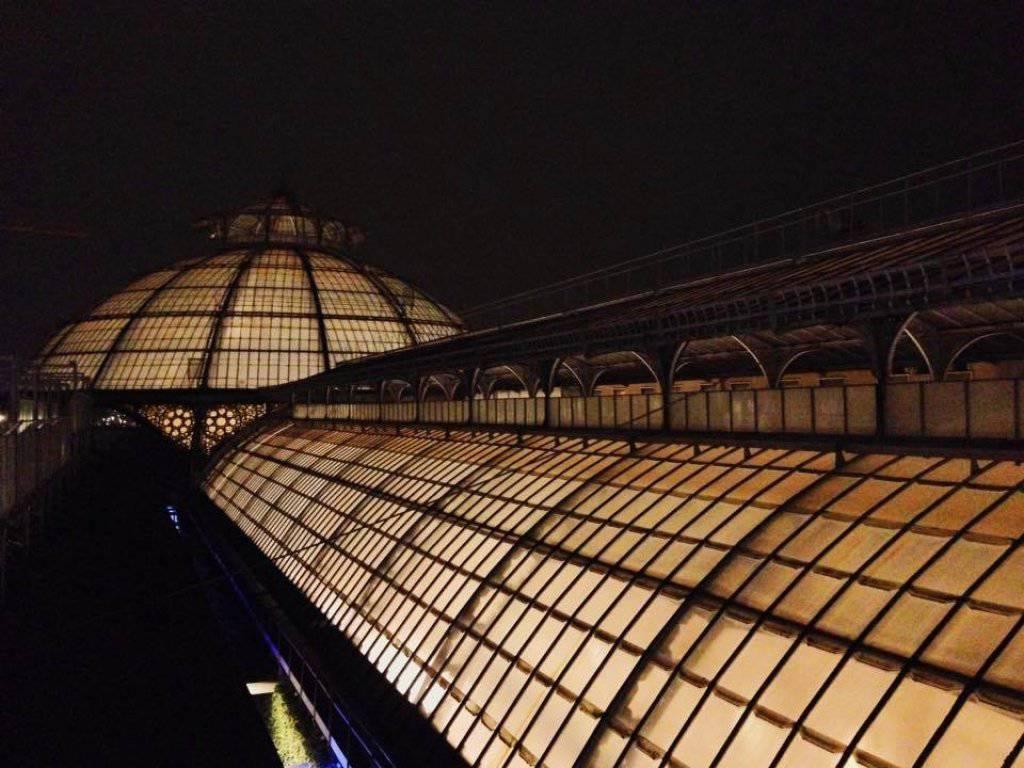 Con Un Occhio Al Cielo Tra Romanticismo E Scienza Nella Notte Di San