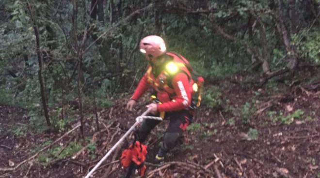 recupero cane buca colonno pompieri