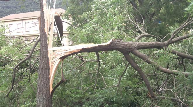 vento fortissimo in provincia, tanti danni