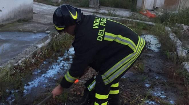 inquinamento gasolio lago a dongo