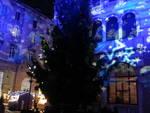 Le suggestioni dei Balocchi e il grande albero di piazza Grimoldi