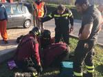 gatto morgana recuperato da pompieri