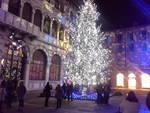 La magia dei Balocchi di Como: acceso l'albero di 16 metri