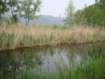 canneto del lago di alserio