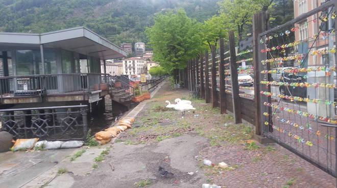 I lavori sul lungolago di Como per riavere la passeggiata