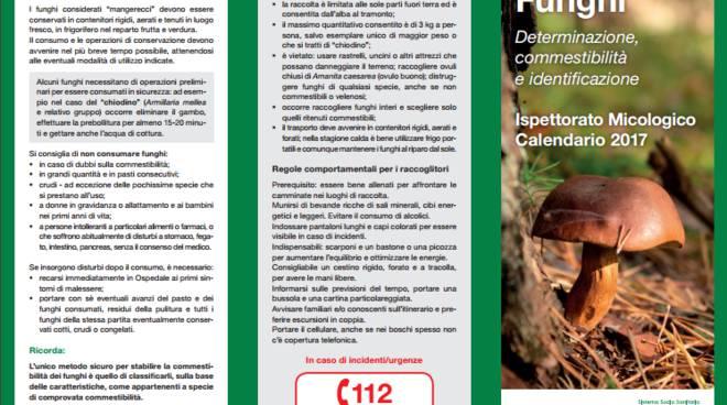 depliant ats insubria per stagione funghi 2017