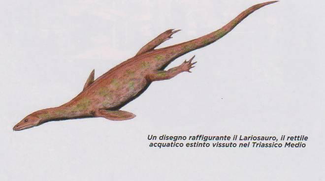 lariosauro como&dintorni