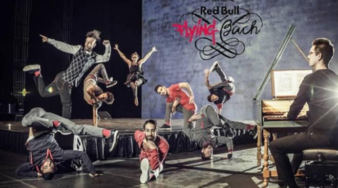red bull flying bach lugano
