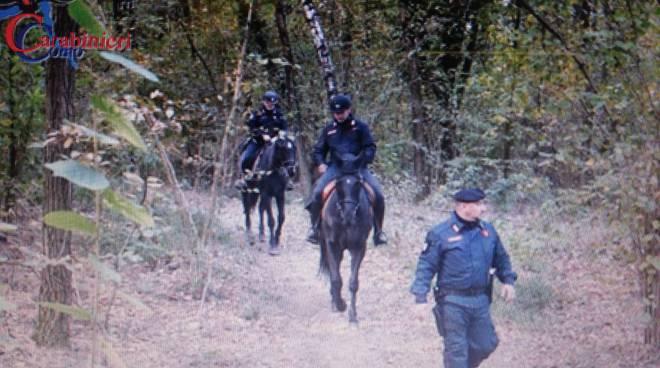 controlli carabinieri olgiate nei boschi con i cavalli contro spaccio