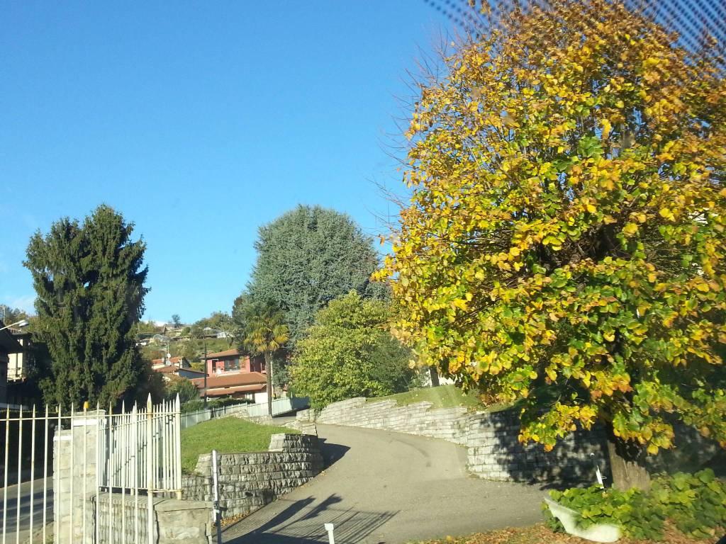 Venerdì di fine ottobre con il favonio sul Lario: temperature primaverili