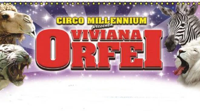 circo millenium como
