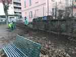 furto alberi carpini in via bellinzona como giardinetti pubblici