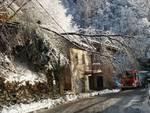 neve e alberi caduti val cavargna intervento pompieri