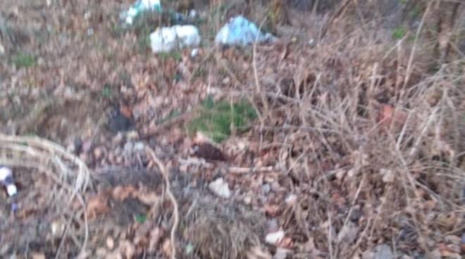 discarica abusiva lora via ariberto da intimiano foto lettrice