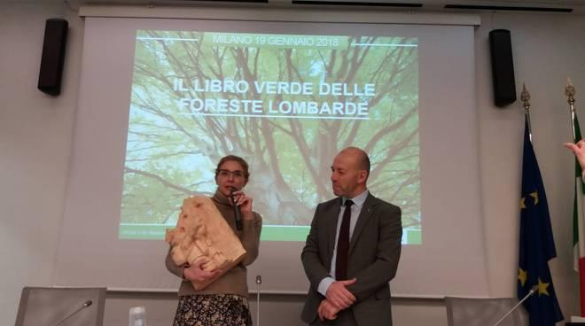 ersaf contratti foresta