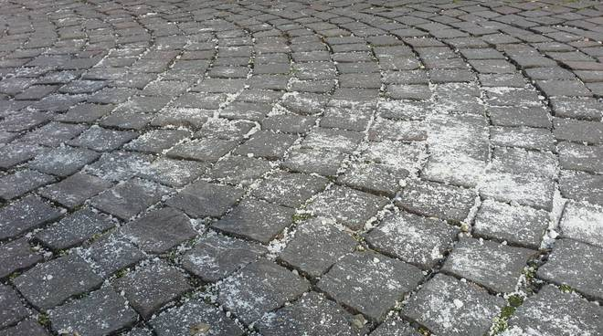 marciapiedi di como con sale per affrontare gelo e neve