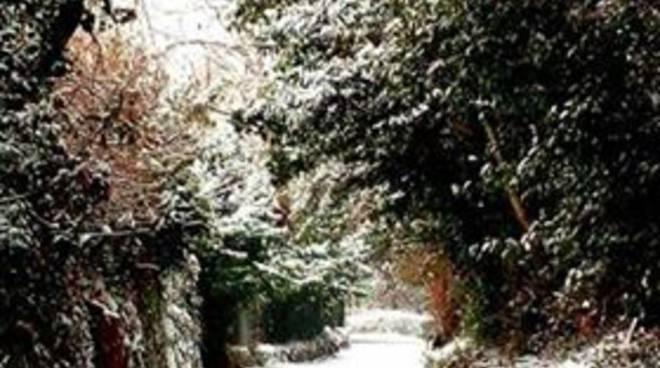 La Como sotto la neve: tutte le foto dei lettori di CiaoComo