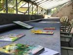 Villa del grumello bookcrossing