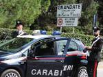 carabinieri di fino mornasco arresto per spaccio bosco grandate