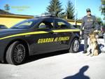 finanza auto e cane per controlli antidroga in strada generica