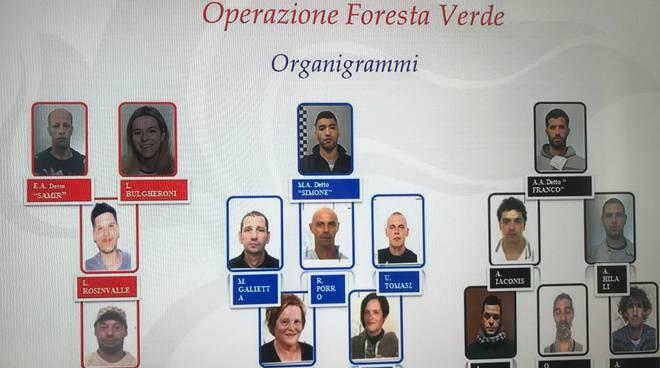 Operazione Foresta Verde