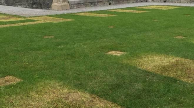 erba danneggiata a villa olmo parco dopo dolce e gabbana