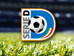 logo serie d generico campo di calcio