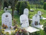 cimitero per animale da affezione anche nel comasco tombe cani e gatti