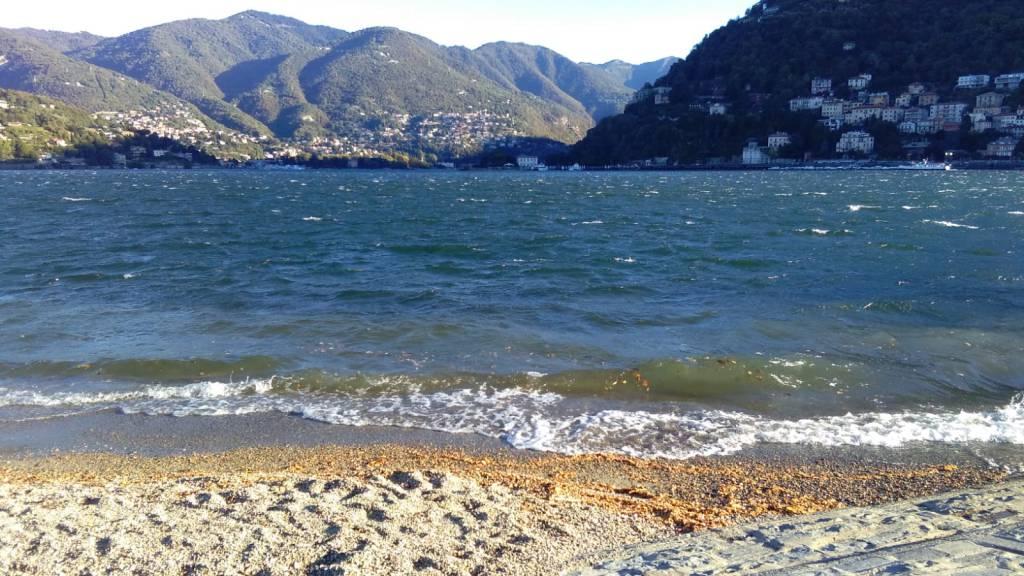 Forti raffiche di vento sul lago e paura sul lungolago for Grosso pesce di lago