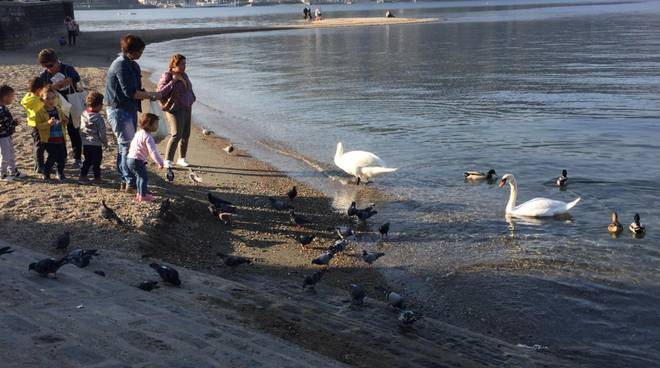 ancora caldo anomalo nel comasco, bambini a giocare a ridosso del lago oggi 25 ottobre
