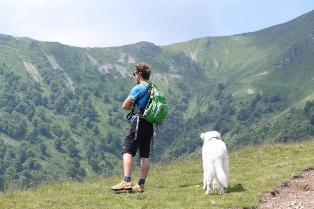 plesio trail e dog trail