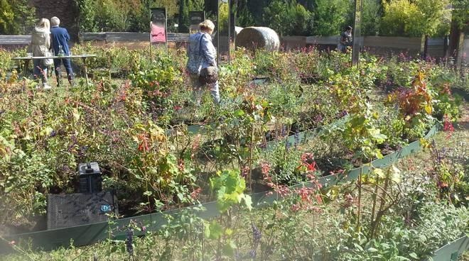 villa erba cernobbio orticolario presentazione alla stampa con roy lancaster e gianfranco giustina