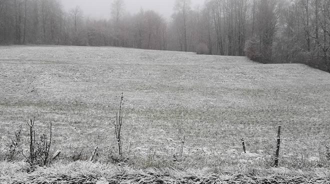 neve su campi cerano valle d'intelvi da meteocomo