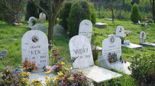 cani e gatti tomba assieme ai padroni, in regione ora si può