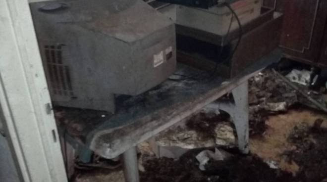 casa degrado a cantù carcasse di cani morti e sporcizia